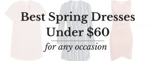 Minneapolis Fashion Blogger Lauren Meyer of The Lo Meyer Blog shares 30 spring dresses under $60 for any occasion | Spring Dresses 2018