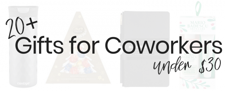 Popular blogger Lauren Meyer of The Lo Meyer Blog shares 20+ Gifts for Coworkers under $30